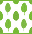 green spinach seamless patternorganic food vector image vector image