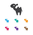 of zoology symbol on camel vector image vector image