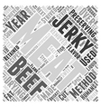 beef jerky recipes Word Cloud Concept vector image vector image