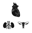 body and human icon vector image