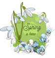 design banner with spring is here vector image vector image