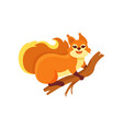 funny red squirrel sitting on wooden branch small vector image vector image