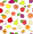 outline hand drawn seamless colorful fruit vector image vector image