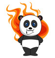 panda with burning heart on white background vector image vector image