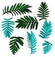 tropical leaf set vector image vector image