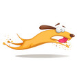 funnu cute crazy yellow dog vector image