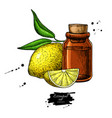 lemon essential oil bottle and lemon fruit hand vector image vector image