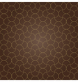 pattern background brown grid vector image