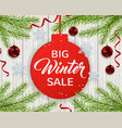 seasonal winter sale vector image vector image