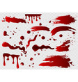 set of blood spots smears vector image