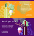 wineyard and red grapes wine internet banners vector image