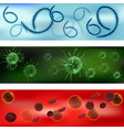 a set of viruses and bacteria viruses and vector image vector image