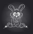 chalkboard background with funny rabbit vector image
