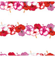 exotic stripes flowers hibiscus white vector image vector image