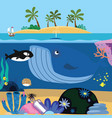 sea cartoon vector image vector image