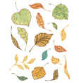 Set of autumnal leaves vector image vector image
