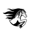 sign of horse vector image vector image