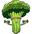 beautiful bright cartoon broccoli engaged in vector image
