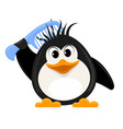 little cute penguin with a comb on a white vector image