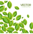 Abstract Background of Green Leaves vector image vector image