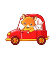 cartoon fox and a hare ride on a red car vector image vector image