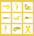 assembly flat shading style icons exotic wild vector image vector image