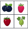 Blueberries Raspberries StrawberryGooseberry vector image