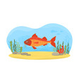 underwater nature scene with swimming fish vector image