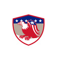 american eagle flag wings perching crest retro vector image vector image