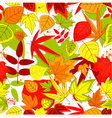 Autumnal seamless pattern vector image vector image