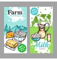 Farm Products Milk Banner Set vector image