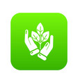 hand sprout icon green vector image vector image