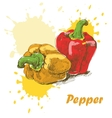 Pepper background vector image vector image