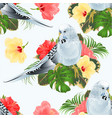seamless texture budgerigar blue pet parakeet vector image