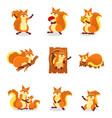 set of cute red squirrel in different actions vector image
