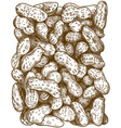 engraving peanuts pattern vector image