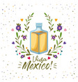 viva mexico colorful poster with tequila bottle vector image vector image