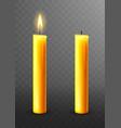 burning extinguished candle isolated vector image vector image
