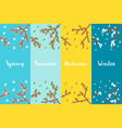 flat design 4 seasons branch set vector image vector image