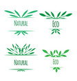 frame of green leaves with place for text natural vector image vector image
