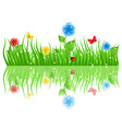 Green grass with flowers a vector illustration