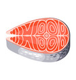 salmon steak isolated of seafood vector image