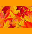background with autumn leaves design element vector image