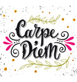 Carpe diem lat seize the day Quote Hand drawn vector image vector image