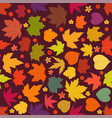 color maple leaves seamless background vector image vector image