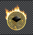 crypto currency stratis golden symbol on fire vector image vector image