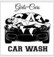 girl on car wash cleaning service vector image vector image