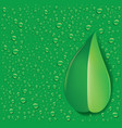 green leaf with fresh water droplets vector image vector image