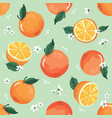 summer seamless pattern with oranges and blossom vector image