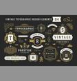 vintage typographic decorative ornament design vector image vector image